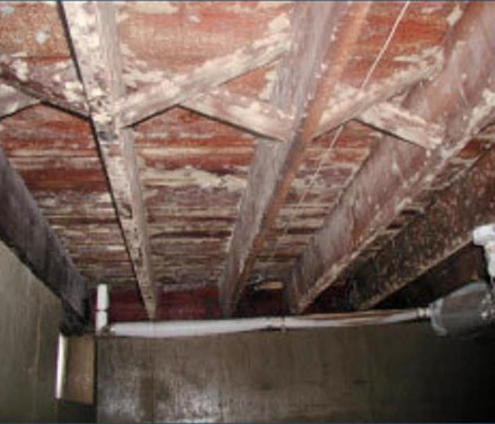 Commercial Basement Mold Removal- Fairhaven, MA 02719 Before