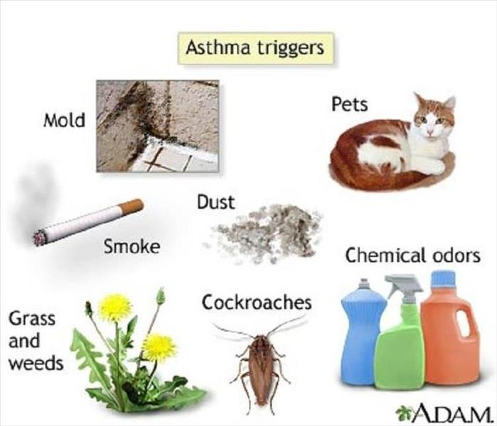 Cleaning HVAC and Asthma - Westport, 02721