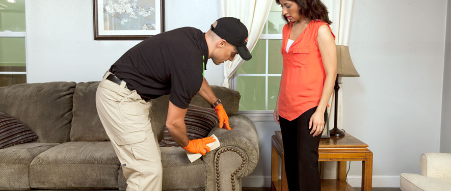 New Bedford, MA carpet upholstery cleaning
